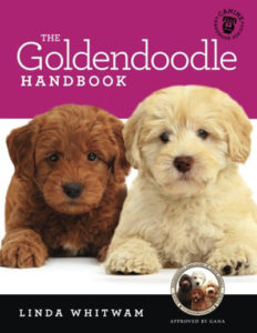 goldendoodle training book