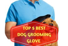 Dog Grooming Glove Reviews