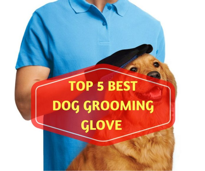 Dog Grooming Glove Reviews