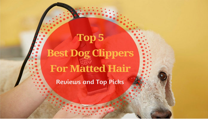 Best Dog Clippers For Matted Hair