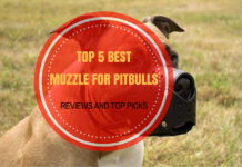 Best Muzzle for Pitbulls