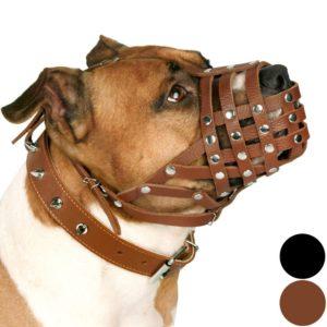 CollarDirect PitBull Dog Muzzle