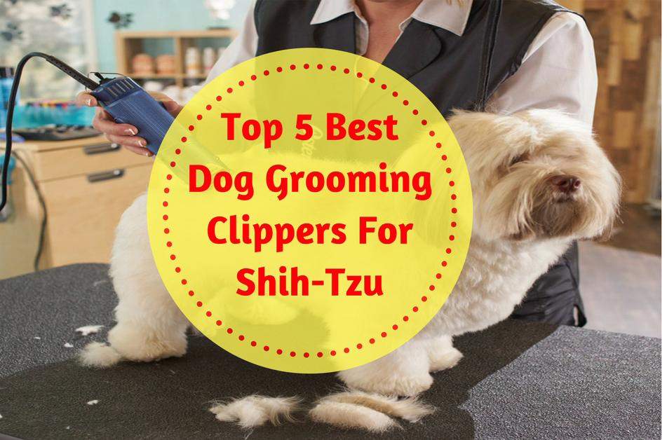 Top 5 best dog grooming clippers for shih tzu in 2018 solutioingenieria Gallery